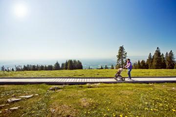 Seit Mai 2014 bietet der Schöckl den ersten barrierefreien alpinen Panoramarundweg.